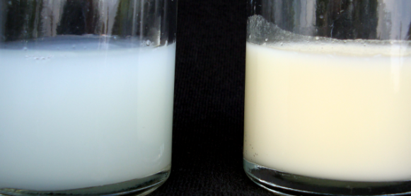 Do Foremilk and Hindmilk look different?, foremilk vs hindmilk