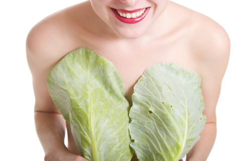 cabbage, cabbage leaves